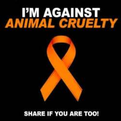Stop Animal Abuse Essay by Im Against Animal Cruelty Animals Are Animal Cruelty Quotes Do What And I