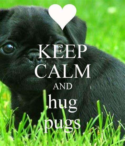 keeping pugs keep calm and hug pugs png 600 215 700 p 237 xeles pugs