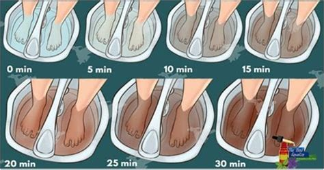 Detoxing Through Ears by 25 Best Ideas About Foot Zoning On Foot