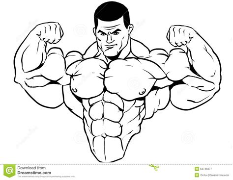 Outline Of A Bodybuilder by Muscular Torso Of A Bodybuilder Stock Vector Image 53745077