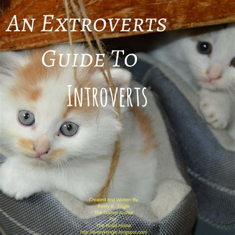 i everyone an introvert s miserable adventures with mailmen children chocolate the outdoors and the human condition books an extroverts guide to introverts the road home