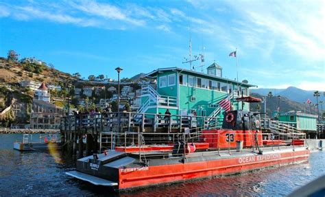 catalina boat ride cost 89 best catalina island images on pinterest southern