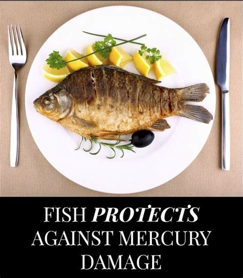 Mercury Detox Brain Damage by Fish S Fatty Acids May Undo Mercury Related Brain Damage