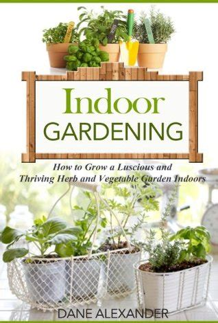 a guide to indoor gardening cnn indoor gardening how to grow a luscious and thriving herb