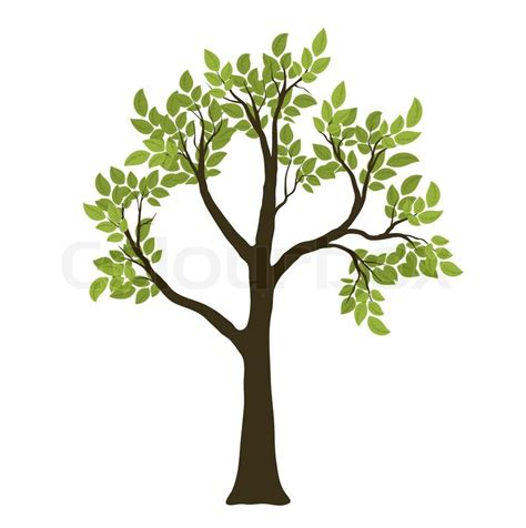 tree symbol green vector tree nature symbol stock vector colourbox