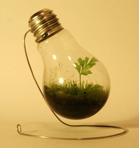 light bulb planter modern and creative plant pot designs