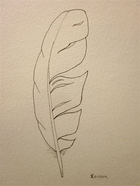 feather tattoo to draw sea bird feather original ink drawing bird feathers