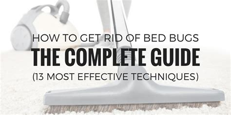 rid  bed bugs  complete guide   effective techniques
