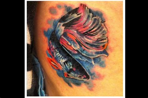 dinkytown tattoo betta fish tattoos worth the money and