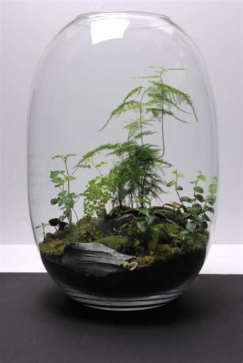 miniature garden   glass bowl ideas