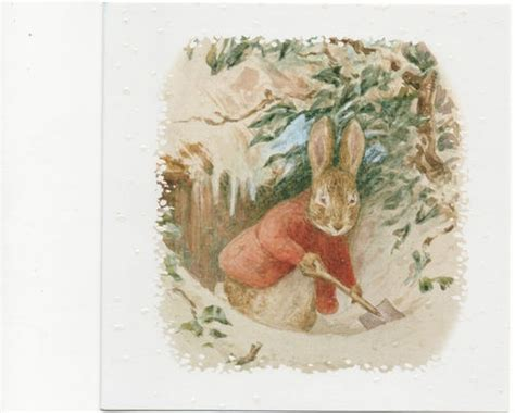 libro peter rabbit a christmas 1000 images about friendly peter on fisher ducks and search