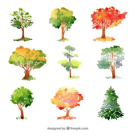 water color tree trees collection in watercolor style vector free