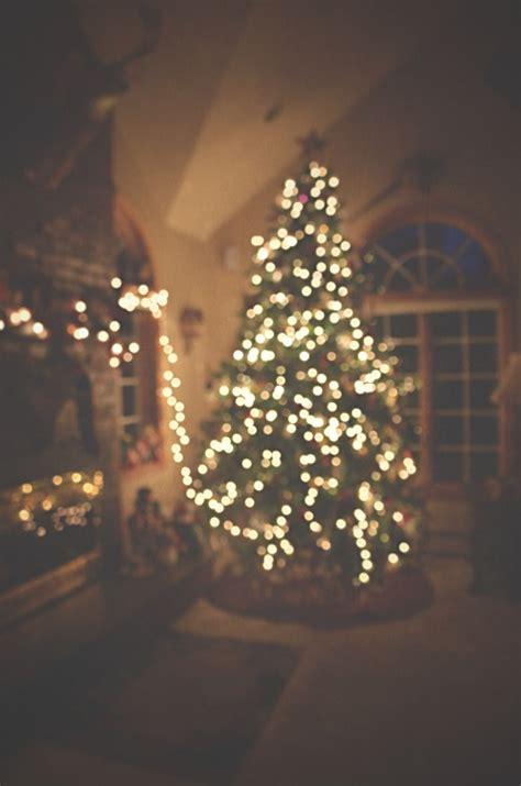 christmas photography winter holiday lights christmas