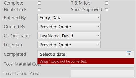 format date xaml net wpf datepicker validation error appears when