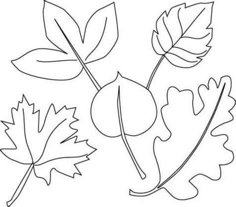 olive leaf coloring page olive trees free coloring pages