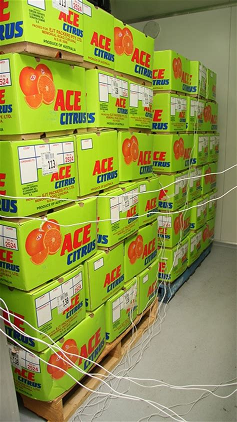 cold storage new year oranges quarantine treatments quarantine treatments