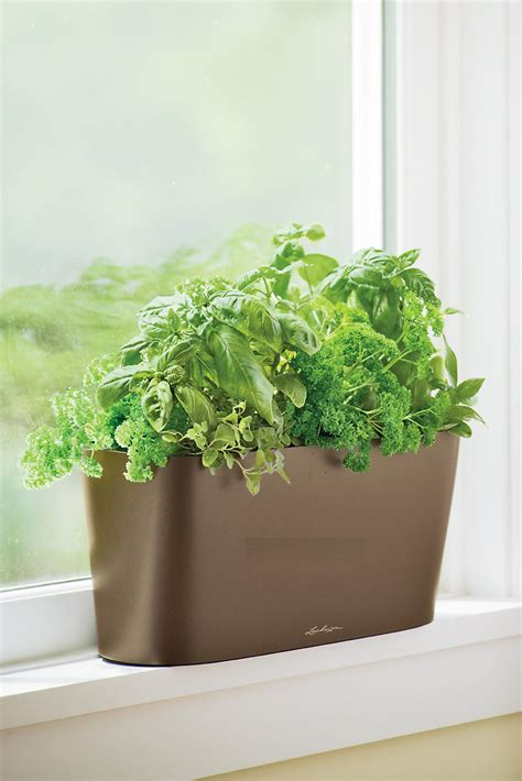 indoor window sill planter indoor planters self watering planters