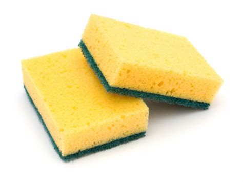 kitchen sponge in your kitchen counter top safety healthy eats food