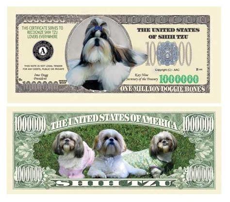 shih tzu for 100 dollars 1 million dollar bill obama