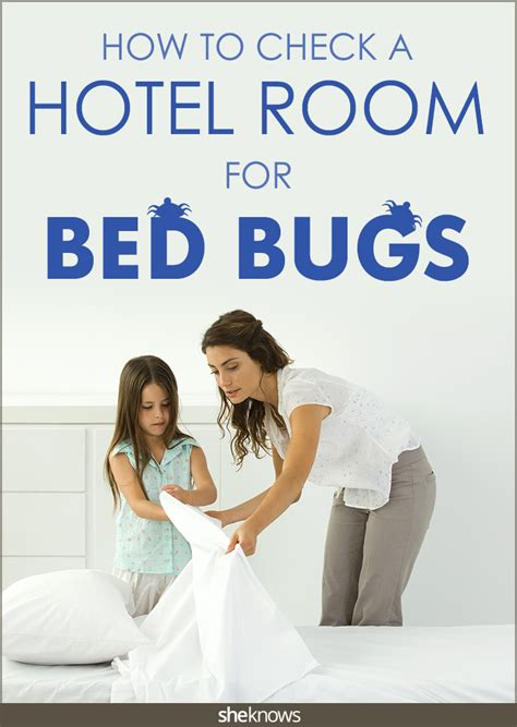 how to look for bed bugs don t let the bed bugs bite quick easy tips to check
