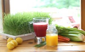 Juice Detox Retreat California by Juice Fasting Detoxification Retreat Retreat In