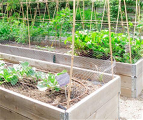 Vegetable Garden Soil Means Lots Of Organic Compost Raised Bed Vegetable Garden Soil Mix