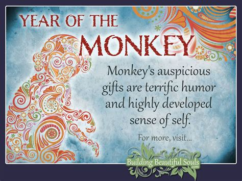 new year year of the meaning zodiac monkey year of the monkey