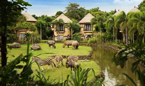agoda telp indonesia menginap di 7 hotel yang bikin liburan serasa di luar