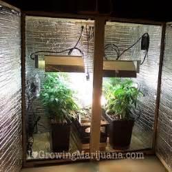 Small Home Grow Setup Marijuana Garden And How To Setup Indoors The Weeb