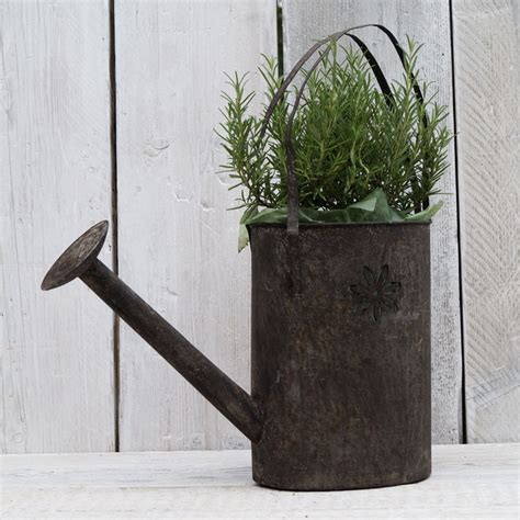 metal watering can planter images
