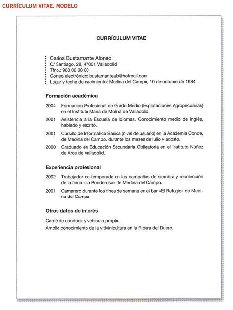 Curriculum Vitae Concepto Y Modelo Pin Ejemplo Modelo Curriculum Vitae Cronologico Como Hacer Un On