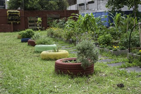 imagenes de jardines escolares las escuelas se suman a la semana del medio ambiente