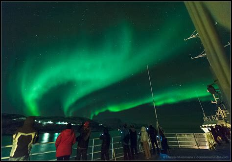 Cruise Of Lights by Arctic Circle Northern Lights Cruise Astronomical Tours