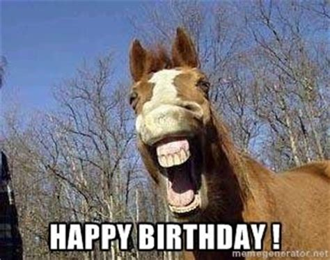 Horse Birthday Meme - 95 best images about horse birthday quotes on pinterest