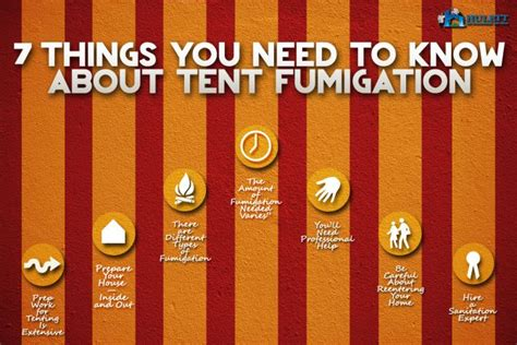 7 Things You Need To About Bedbugs by 7 Things You Need To About Tent Fumigation