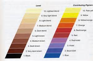 hair color levels hair color level system underlying pigments and