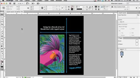 youtube liquid layout indesign free download program place multiple page pdf into