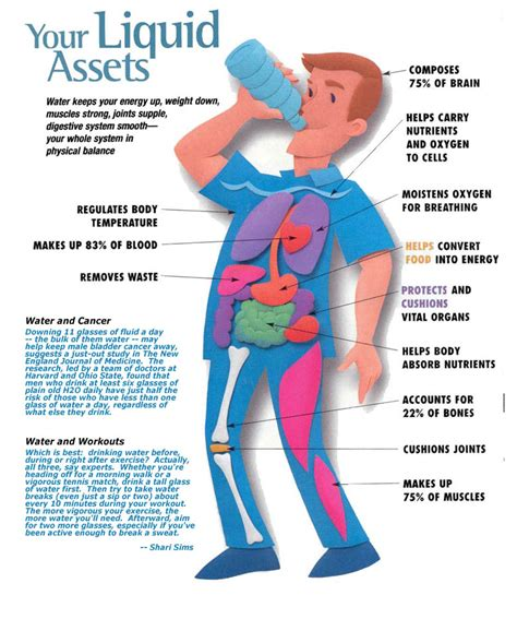 what is hydration water spouts hydration and exercise