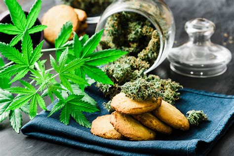 merry xmas   govt canada cleared edible cannabis products