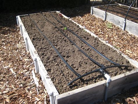raised bed irrigation new drip irrigation system susan s in the garden