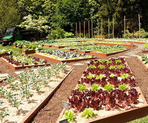 The White House Vegetable Garden White House Vegetable Garden