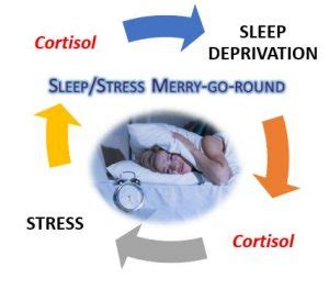 Sleep Detox Mattress by Stress Sleep Are Toxic Bed Fellows Detox Or Not To Tox