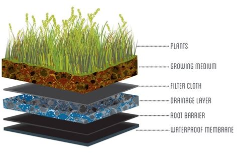 a guide for specifying green roofs in australia architecture and design