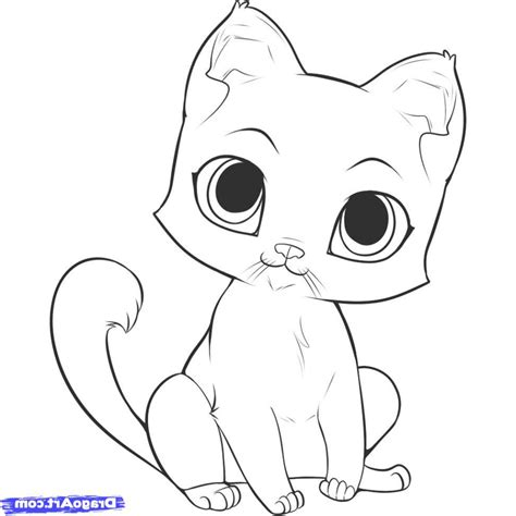 cat easy drawing of a cat www pixshark images