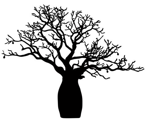 boab tree png 1000 215 841 2016 tattoo pinterest tattoo