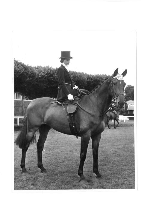elementary equitation principles of horseback classic reprint books 17 best images about sidesaddle in black and white on