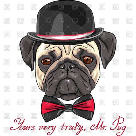 pug tie clip in a hat and bow tie pug vector image 43472 rfclipart