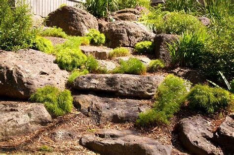 large garden rocks melbourne garden ftempo