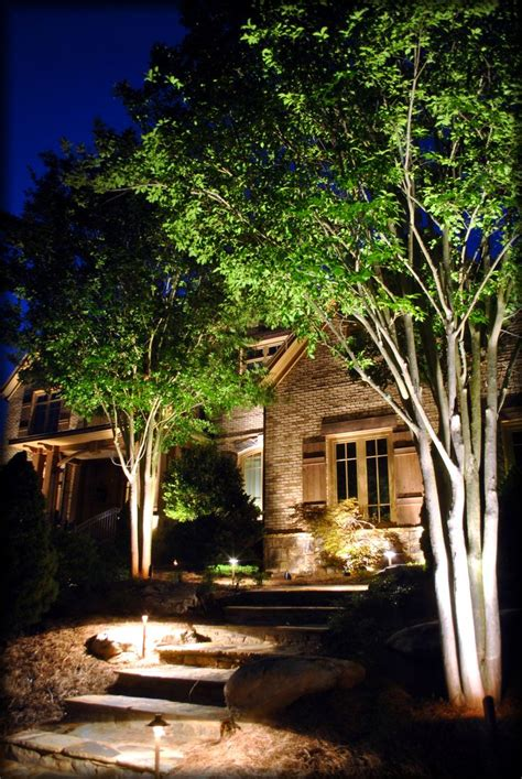 Beautiful Landscape Lighting Shot Of This Mature Crape Advantage Landscape Lighting