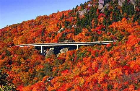 fall colors 2017 southern east coast fall leaf looking 2017 blu ridge vintage